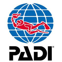 PADI_ver_col_web.jpg